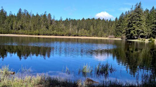 Der schwarze See im Pohorje ist ein Spiegel der Seele