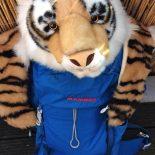 Der blaue Tiger ist ein neugieriger und vor allem intelligenter Rucksack