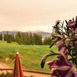 Nach dem Regen, dampfen die Berge und blühen die Blumen auf